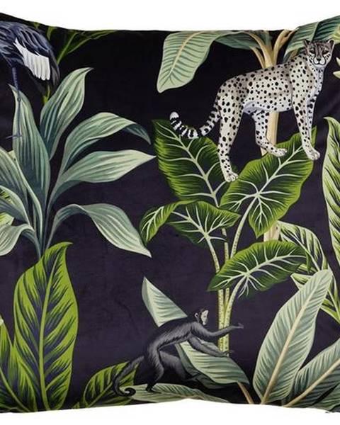 Möbelix Dekoračný Vankúš Junglelife, 60/60cm, Čierna