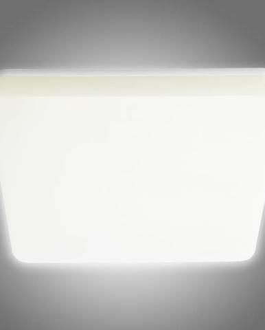 Stropné svietidlo Varso Led 24W-WW-L 26446