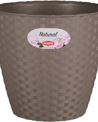 Kvetináč Natural 19cm/Še