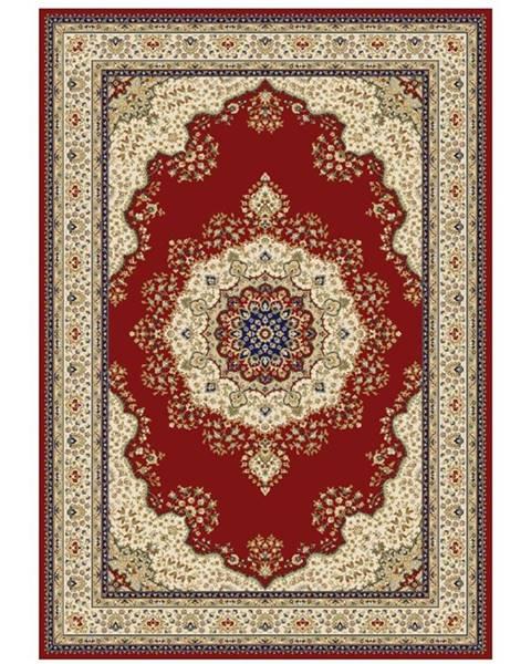 Tempo Kondela Kendra Typ 3 koberec 100x150 cm vínovočervená