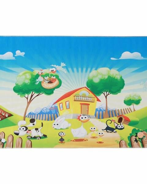 Tempo Kondela Jenny koberec 150x100 cm kombinácia farieb