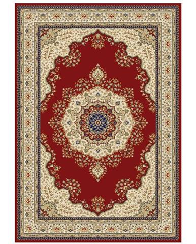 Kendra Typ 3 koberec 67x120 cm vínovočervená