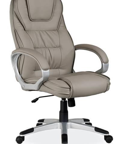 Q-031 kancelárske kreslo s podrúčkami sivá