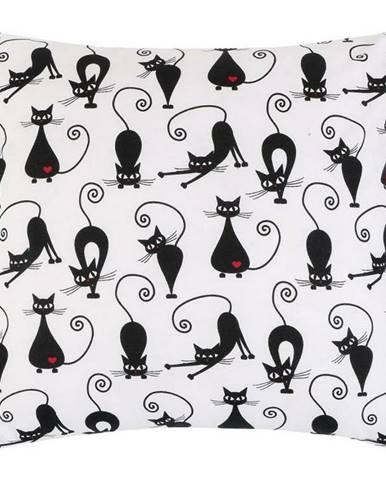 Bellatex Obliečka na vankúšik Mačka čierna, 40 x 40 cm
