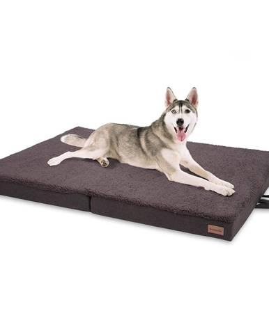Brunolie Paco, pelech pre psa, vankúš pre psa, možnosť prania, ortopedický, protišmykový, priedušný, skladacia pamäťová pena, veľkosť XL (120 × 10 × 85 cm)