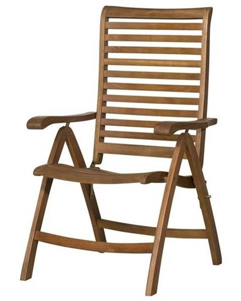 Sconto Polohovacia stolička HOLSTEIN eukalyptus