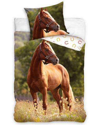 Tiptrade Bavlnené obliečky Kôň Ryzák, 140 x 200 cm, 70 x 90 cm