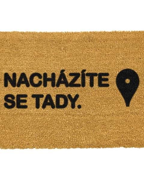 Artsy Doormats Rohožka z prírodného kokosového vlákna Artsy Doormats Tady, 40 x 60 cm