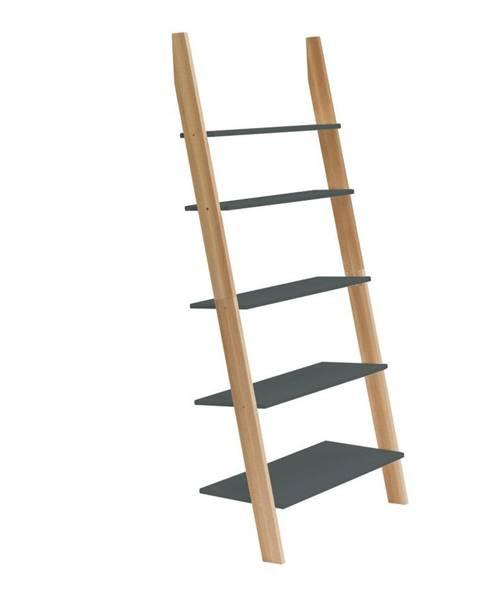 Ragaba Grafitovosivá rebríková polica Ragaba ASHME, šírka85cm