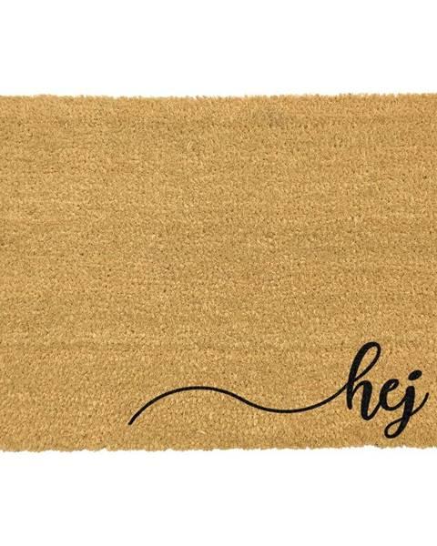 Artsy Doormats Rohožka z prírodného kokosového vlákna ARTS Doormats Hej, 40 x 60 cm